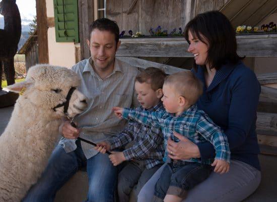 Famillie Balsiger – Alpakazüchter