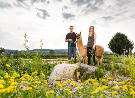 Claudia Fisch und Beat Troxler – Alpakazüchter