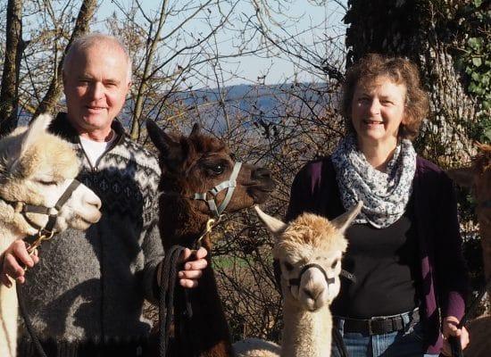 Familie Nydegger – Alpakazüchter