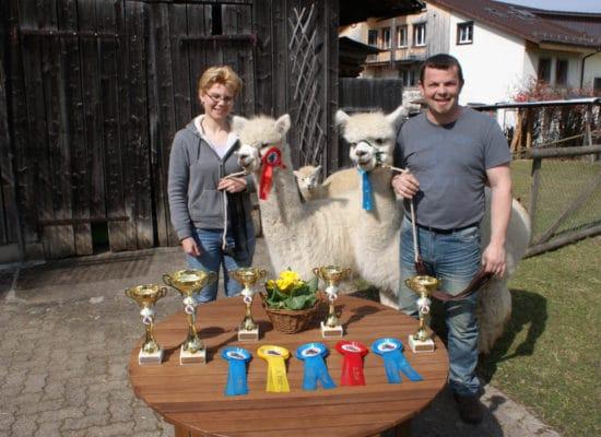 Familie Zollinger- Alpakazüchter